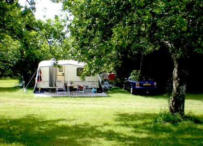 A shady camping pitch ay Les Quatre Saisons